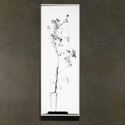 Blumen Fotogramm 02_weiss_Wall frame