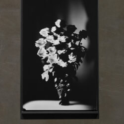 Rosen_Long Format_Black