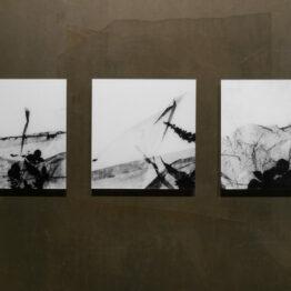 Auf der Meer Triptychon