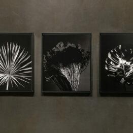 Schatten Triptychon