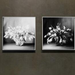 Tulpen schwarze diptychon
